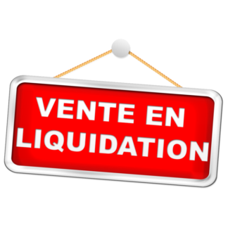 Liquidation fille